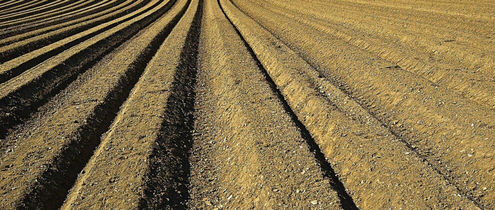 recours-pesticides-risques-terres-agricoles