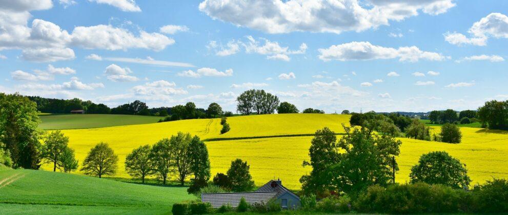 pesticide-produit-phytosanitaire